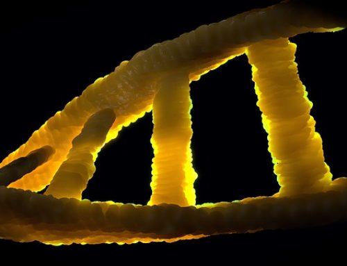 EU / Genetik: Entscheidung des EuGH über genetisch veränderte Organismen