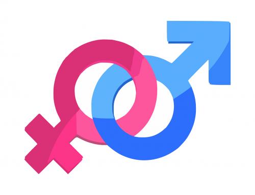 US / Gender: US-Regierung scheint anerkannte Geschlechter wieder auf zwei reduzieren zu wollen
