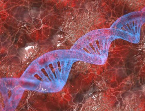 USA / Behinderung: Neue Forschungsergebnisse in Zusammenhang mit Down-Syndrom