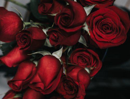 AT / Pastoral : Gute Nachrichten und viel Segen zum Valentinstag